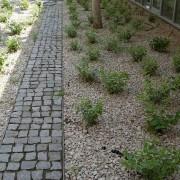 Piatra Cubica Granit Gri Sare si Piper Natur 5 x 5 x 5 cm (1 tona = 8-9 mp)