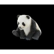 Pui de urs panda