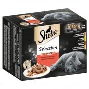 48x85g Sheba Variedades seleção de carnes e aves em molho