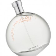 Hermès Eau des Merveilles desodorizante vaporizador para mulheres 100 ml