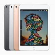 """Apple iPad mini 20,1 cm (7.9"""") 64 GB Wi-Fi 5 (802.11ac) 4G LTE Grijs iOS 12"""
