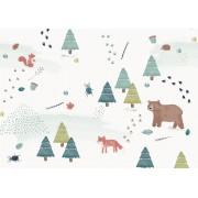 Dille&Kamille Carte, animaux dans la forêt