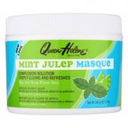Queen Helene Mint Julep maska pro mastnou pleť se sklonem k akné 340 g