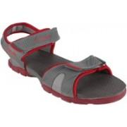 Action Campus Men Light Grey Dark Grey Red Sports Sandals