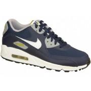 Nike Air Max 90 Gs 307793-417