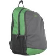 Wildcraft Backpack(Green, Grey)