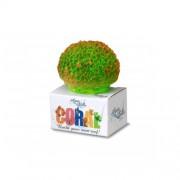 Coral Reef Module Brain Groen S