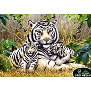 Puzzle Life 1000 piece Jigsaw Puzzles white tiger family in the break