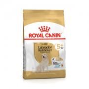 Royal Canin Labrador Retriever Adult 5+ - 12 kg
