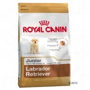 12kg Labrador Retriever Junior Royal Canin pienso para perros