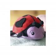 Soapsox-Bella The Ladybug - CATARINA