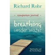 Breathing Under Water Companion Journal. Spirituality and the Twelve Steps, Paperback/Richard Rohr