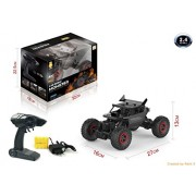Curtis Toys 1:18 2.4G 4WD Alloy Large Foot Off-Road RC Climbing Car RTR (Black)