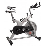Bicicleta Indoor Cycling inSPORTline Epsilon