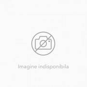 Aladdin si lampa fermecata/Aladdin and the magic lamp