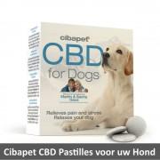 Cibdol Cibapet CBD pastilles Hond