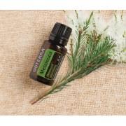 Ulei esential Melaleuca-arborele de ceai doTERRA-60204660