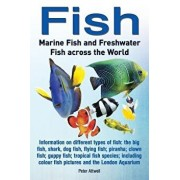 Fish: Marine Fish and Freshwater Fish Across the World: Information on Different Types of Fish: The Big Fish, Shark, Dog Fis, Paperback/Peter Attwell