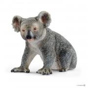 Urs Koala