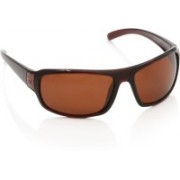 MTV Wrap-around Sunglasses(Brown)