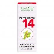 Polygemma nr.14 Articulatii - detoxifiere