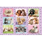 Puzzle Schmidt - My Animal Friends, 100 piese (56268)
