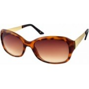 Joe Black Oval Sunglasses(Brown)