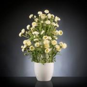Aranjament floral BABILON RANUNCOLO BIG 95cm, alb