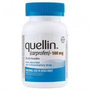 Quellin Carprofen Soft Chew - Generic to Rimadyl 100 mg chewables 30 ct by BAYER