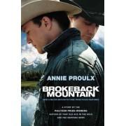 Brokeback Mountain, Paperback