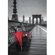 """Puzzle Educa - Red umbrella, Brooklyn bridge """"Coloured Black & White"""", 1000 piese, include lipici puzzle (17691)"""