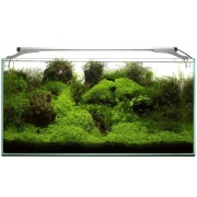 AQUAEL Leddy Slim 36W Plant 100-120 cm