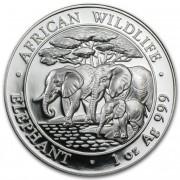 Bavorská mincovna stříbrná mince 100 Schillings Elephant (Slon africký) 1 Oz 2013 African Wildlife Series