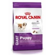 Hrana pentru caini Giant Puppy 15 kg Royal Canin