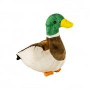 Pluș rață sălbatică, 15 cm