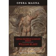 Cartile profetice iluminate. Milton