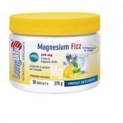 longlife magnesium fizz 270g