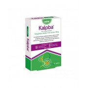Dr.Willmar Schwabe Gmbh&co.Kg Kaloba 21 Compresse Rivestite 20 Mg