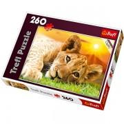 Trefl Puzzle Slagalica Lion Cub 260 kom (13163)