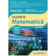 Culegere de matematica clasa X-a. Filiera teoretica specializarea matematica informatica. Semestrul I