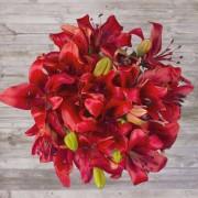 Original Love-Flores ao domicílio