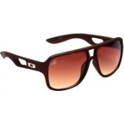 Eddy's Eyewear Round Sunglasses(Brown)