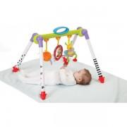 Centru De Joaca Pliabil - Albinuta Plimbareata Taf Toys
