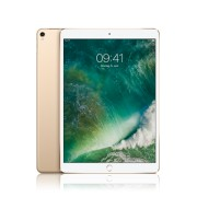 Apple iPad Pro 12,9 Zoll WiFi + Cellular 64GB, gold, mit Apple SIM