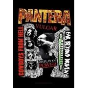 zászló Pantera - 3 Albums - HFL1146