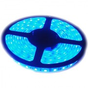 Ever Forever Self Adhesive LED Strip Light (Blue) 5 Meter Roll with LED Driver