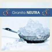 Officine Gastronomiche Preparato per Granita Neutra 20 buste da 630 gr