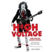 High Voltage, Paperback