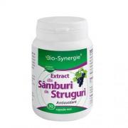 Extract din Samburi de Struguri 30cps Bio Synergie