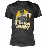 PhD DC Comics - Robin Holy Smokes T-Shirt